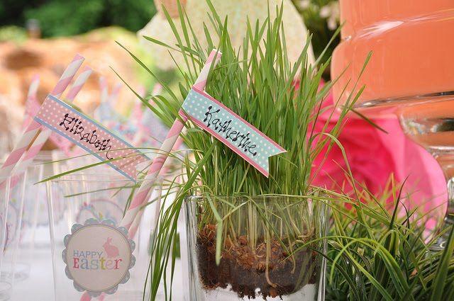Wheat grass table decor kids table decoration pinterest