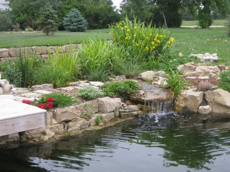 Pond With Bog Filter Backyard Ponds Pinterest