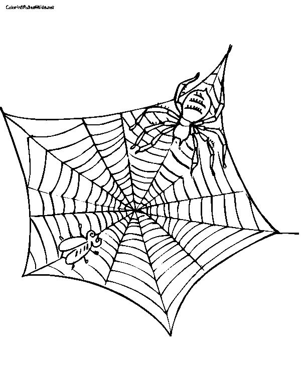 Fern In Charlottes Web Free Coloring Pages Charlottes Web Coloring Pages