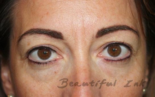 After lash definer amp eyebrows portfolio eyeliner tattoo semi p