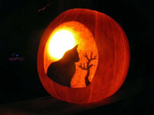 Cool pumpkin carving ideas halloween thanksgiving fall for The coolest pumpkin carvings