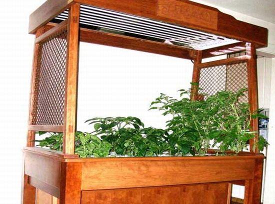 Indoor hydroponics gardening pinterest for Indoor gardening hydroponics