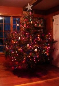 The smell of a cedar christmas tree my favorite things pinterest