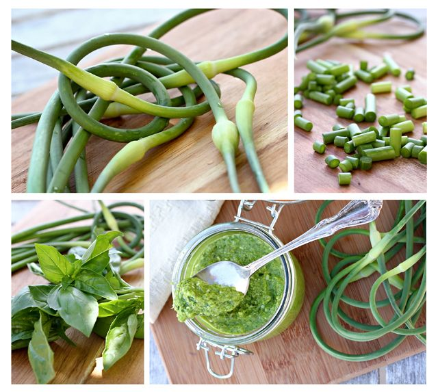 Market Monday: Garlic Scape and Basil Pesto