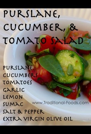 purslane salad with cucumber and tomato | {Purslane Recipes and Tips ...
