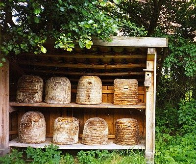 :: traditional bee skep