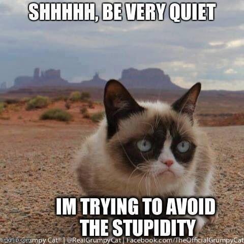 Grumpy Cat Boss