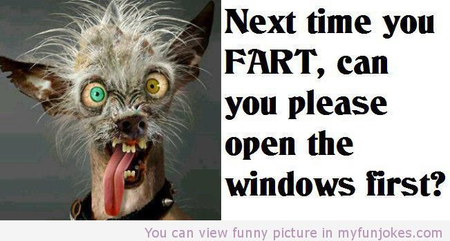 Funny Next Time You Fart Really Photos Prank