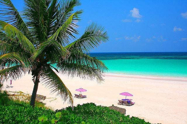 Harbor island pink sand beach bahamas islands in the sun for Pink sands beach in harbour islands