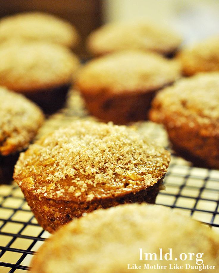 Pumpkin Oatmeal Muffins ~ I am ABSOLUTELY making these!