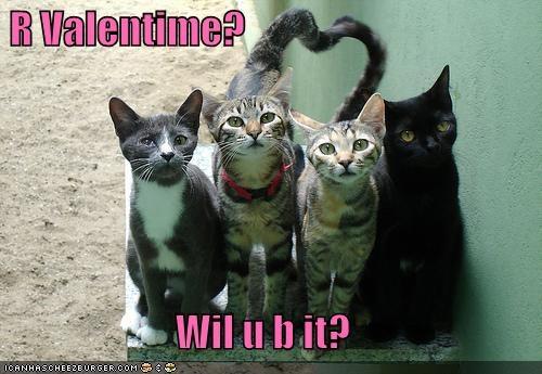 valentine quotes humorous