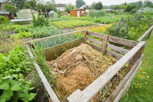 Backyard Mulch Pile : garden gold composting info