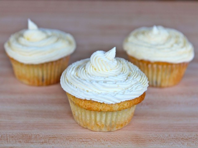 Coconut Chocolate Chip Cupcakes from The Shiksa in the Kitchen (http ...