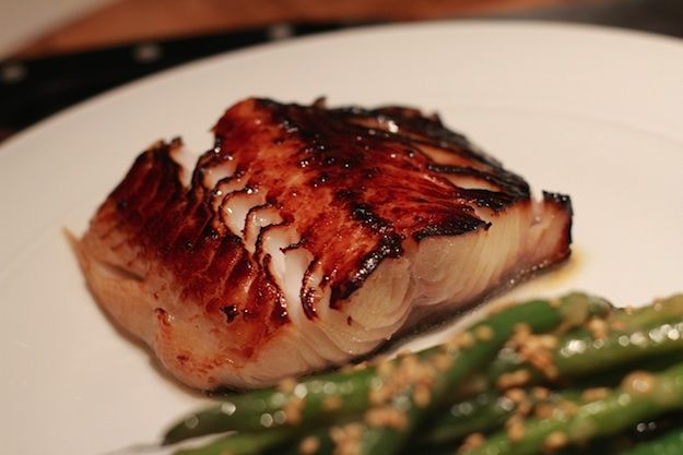 ... miso glazed black cod black cod with miso catch of miso cod delicious