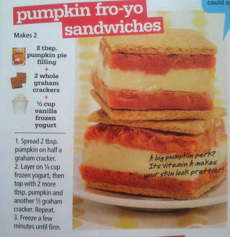 Skinny Chocolate Chip Fro-Yo Sandwiches Recipes — Dishmaps