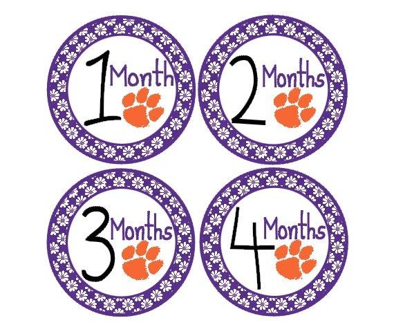 BIrthday Month Stickers Clemson by 19seventy5designs on Etsy, $9.00