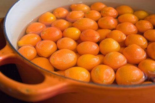 candied kumquats | condiments | Pinterest