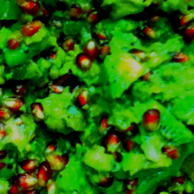 Kiwi Salsa with pomegranates & avocados | Recipes | Pinterest