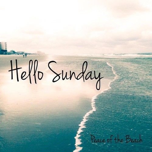 Good Morning Everyone Sunday : Good morning everyone quotes posters such pinterest