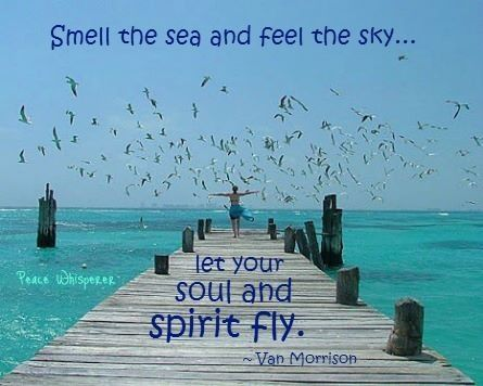 Feel the joy words of wisdom and hope pinterest