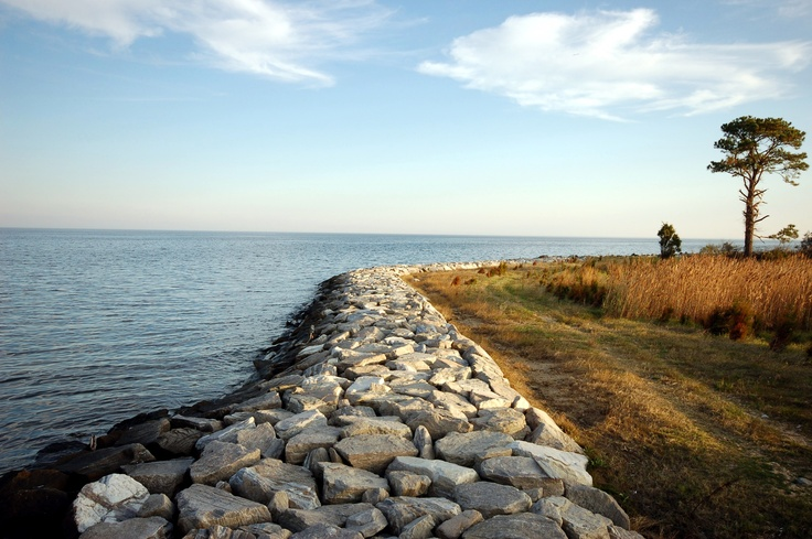 Point lookout md places i love pinterest for Point lookout fishing