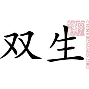 chinese symbols for twins