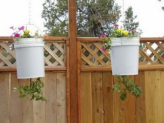 Self Watering 5 Gallon Bucket Grow Tomatoes and Peppers