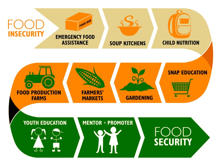 Food insecurity gt food security quot we need to make sure that everyone