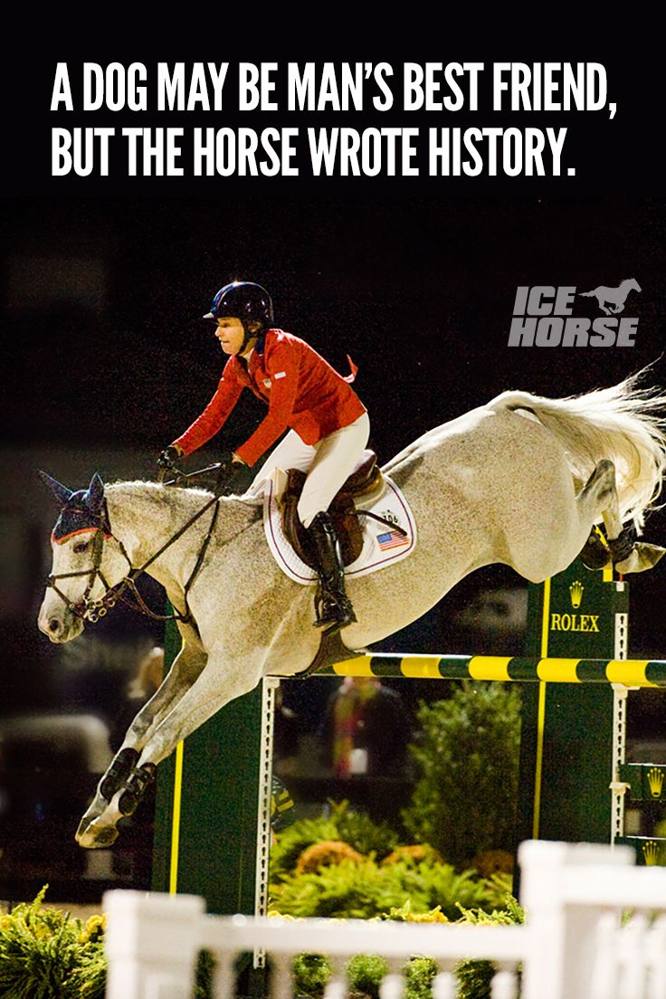 Jumping Horse quotes pictures