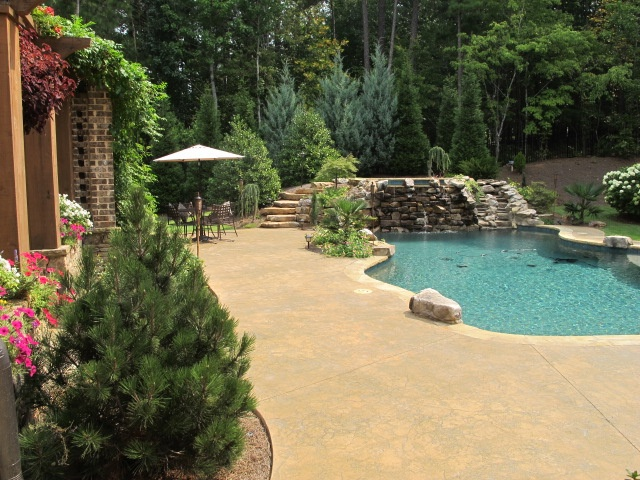 Great backyard pool pools pinterest for Pool in my backyard