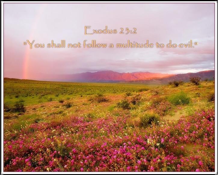 shavuot scripture