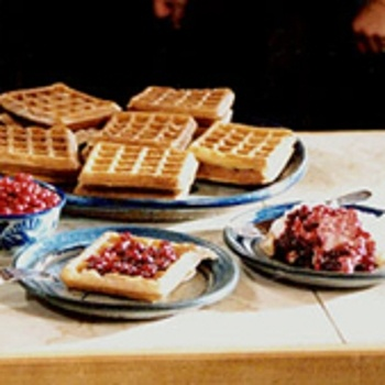 Sourdough Waffles Recipe - ZipList | First Thing in the Morning ...