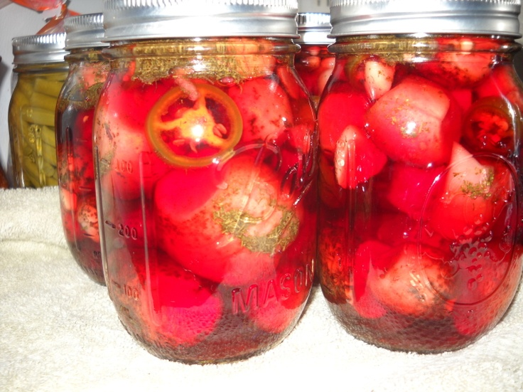 Spicy Refrigerator Pickles With Radishes Recipe — Dishmaps