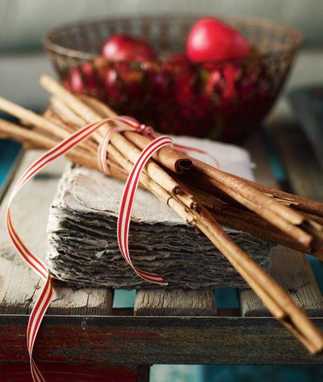 cinnamon sticks & apples