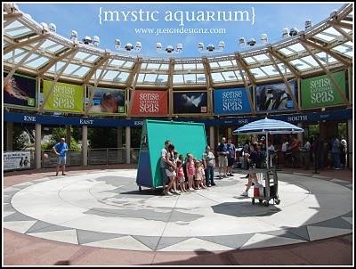 Mystic Aquarium Connecticut Travel Pinterest
