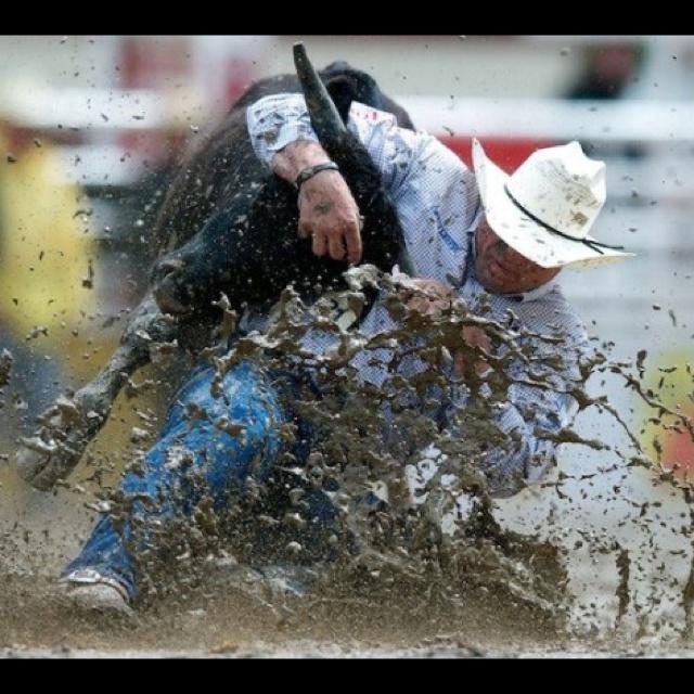 Matt Reeves PRCA Steer Wrestler. Getting it done in the mud!
