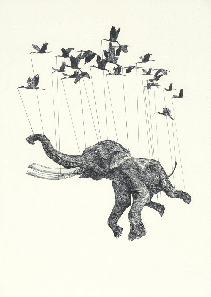flying elephant illustration
