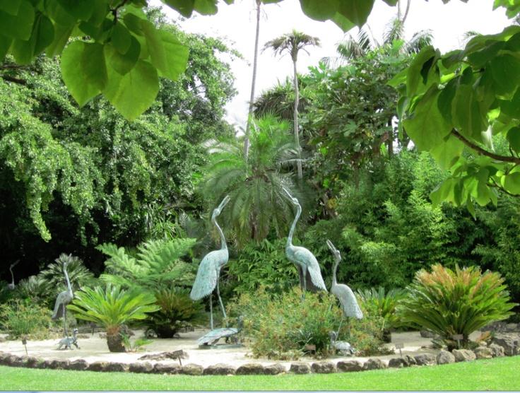 Geelong botanic garden geelong botanic gardens gardens for Garden design geelong