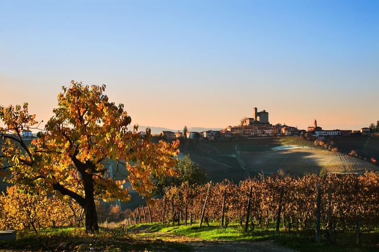 Serralunga d'Alba Italy  city images : Serralunga d'Alba, Italy | Italy | Pinterest