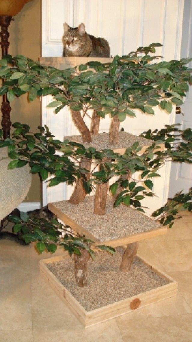 Cute diy cat tree kit crafts pinterest for Diy cat tree