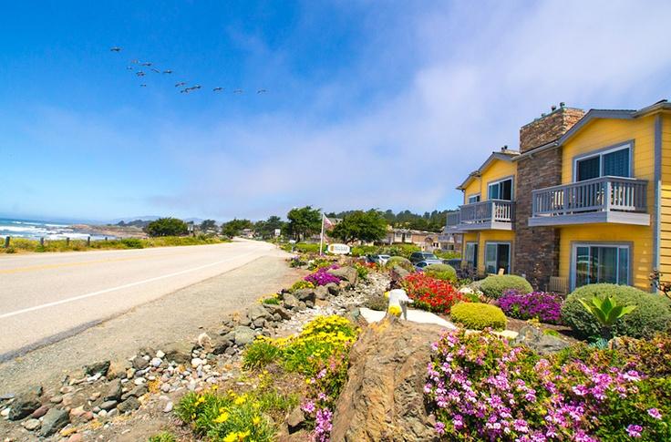 cambria california pelican inn california vacation. Black Bedroom Furniture Sets. Home Design Ideas