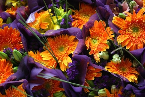 Orange purple flower arrangement orange purple for Can you get purple roses