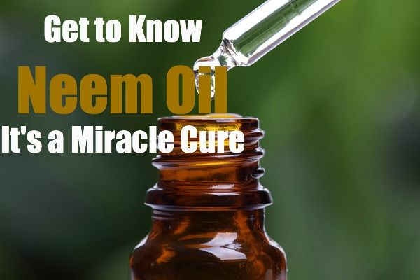 Neem Oil - Homemade Remedies and Soap Recipes