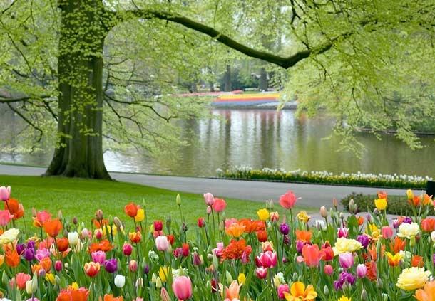 Meadowlark Botanical Gardens Virginia America The