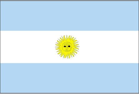 pic of argentina flag