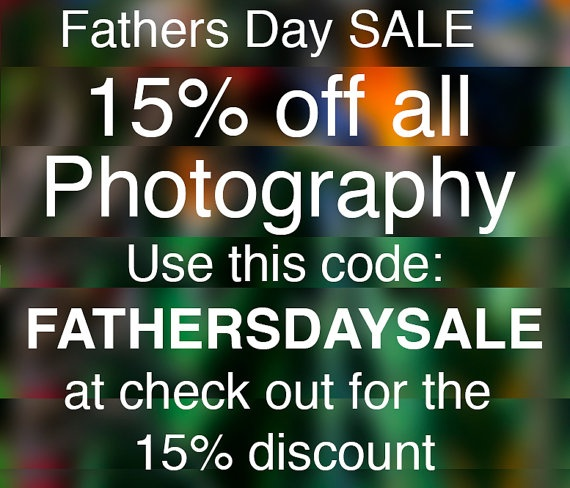 father's day sale at costco