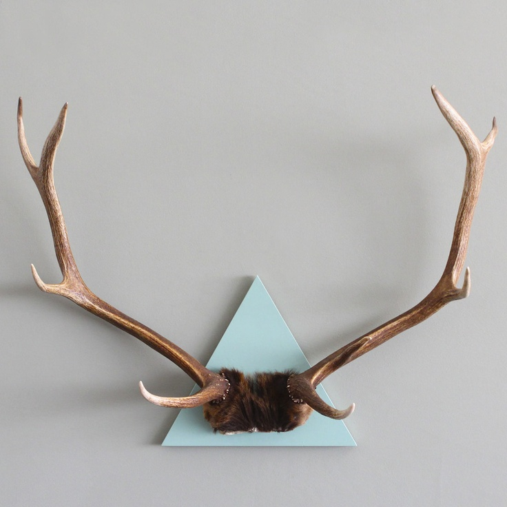 9 Pt Antler On 14 Cloud