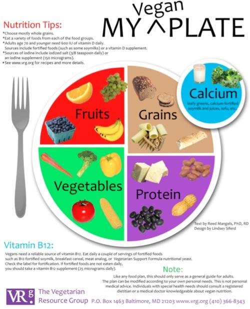 "Vegan ""My Plate"" | Teach | Pinterest"