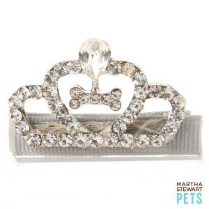 In honor of the #RoyalWedding anniversary, dress your pet like royalty with the #MarthaStewartPets Tiara sold only at #PetSmart.
