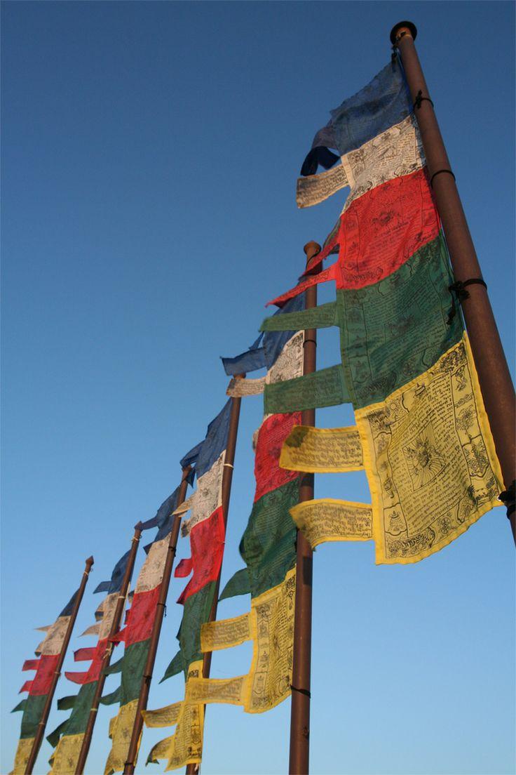 the nepal flag